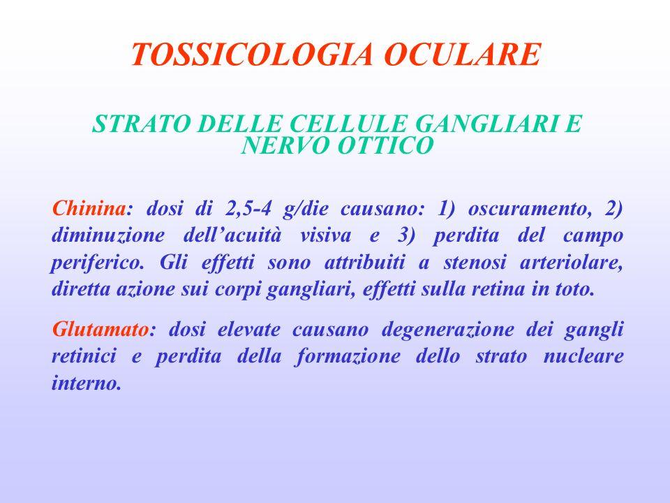 TOSSICOLOGIA OCULARE STRATO DELLE CELLULE GANGLIARI E NERVO OTTICO Chinina: dosi di 2,5-4 g/die causano: 1) oscuramento, 2) diminuzione dellacuità visiva e 3) perdita del campo periferico.