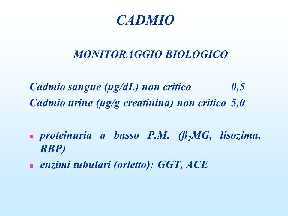 MONITORAGGIO BIOLOGICO Cadmio sangue (µg/dL) non critico0,5 Cadmio urine (µg/g creatinina) non critico5,0 n proteinuria a basso P.M. (ß 2 MG, lisozima