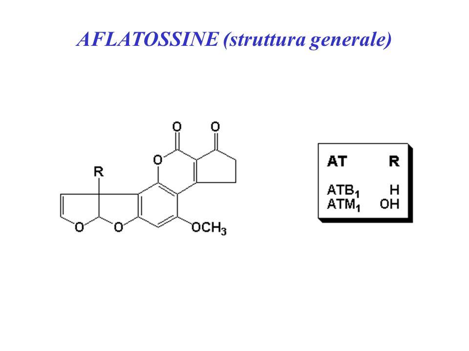 AFLATOSSINE (struttura generale)