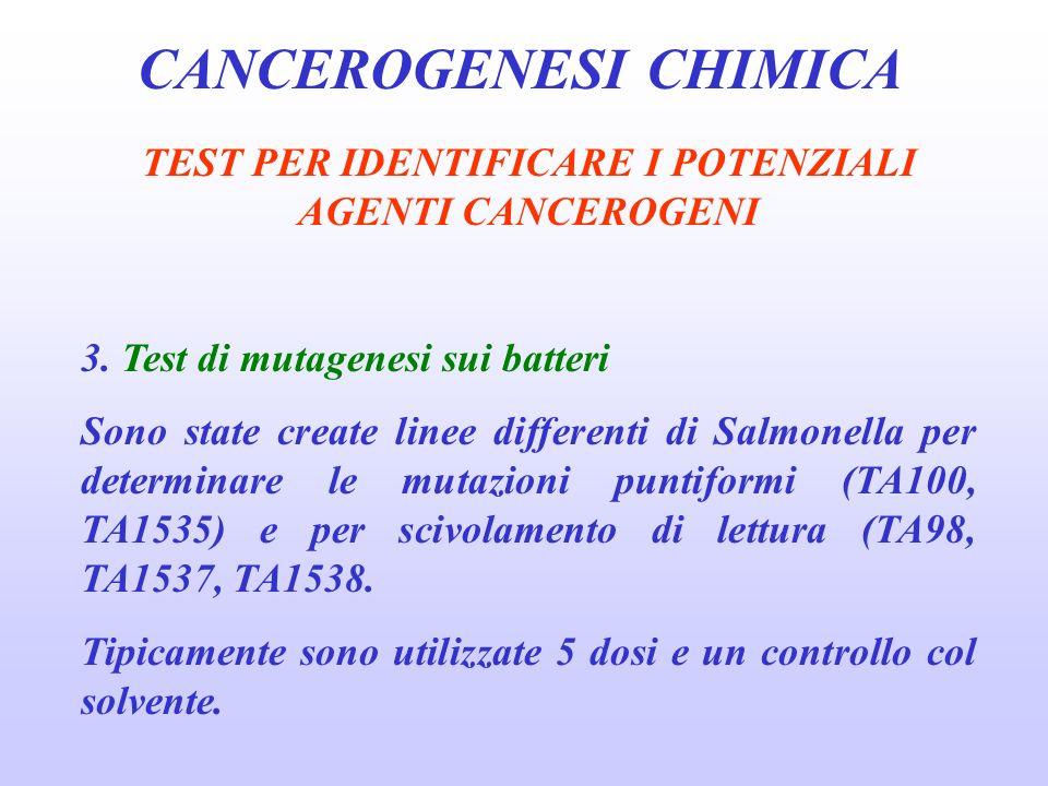 CANCEROGENESI CHIMICA TEST PER IDENTIFICARE I POTENZIALI AGENTI CANCEROGENI 3.