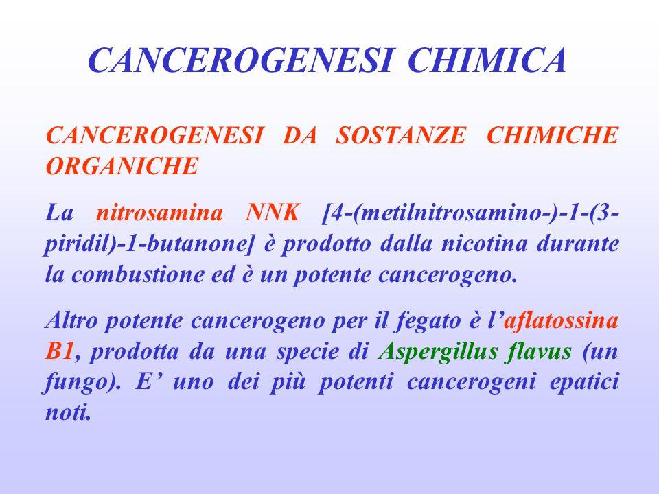 CANCEROGENESI CHIMICA CANCEROGENESI DA SOSTANZE CHIMICHE ORGANICHE La nitrosamina NNK [4-(metilnitrosamino-)-1-(3- piridil)-1-butanone] è prodotto dalla nicotina durante la combustione ed è un potente cancerogeno.