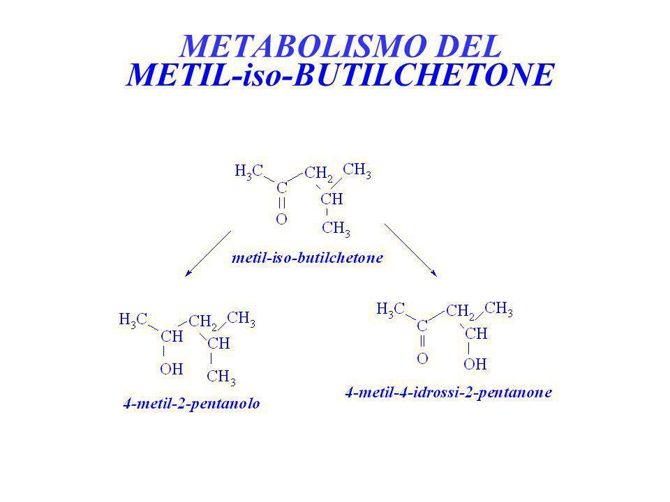 METABOLISMO DEL METIL-iso-BUTILCHETONE