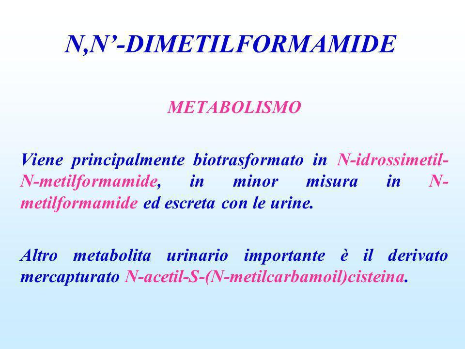 METABOLISMO Viene principalmente biotrasformato in N-idrossimetil- N-metilformamide, in minor misura in N- metilformamide ed escreta con le urine. Alt