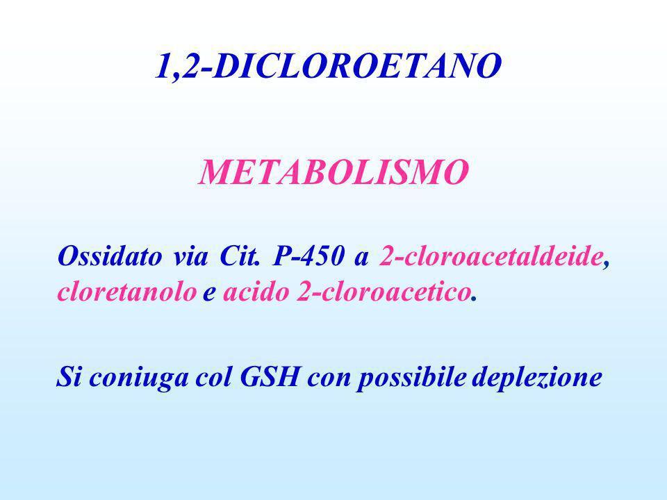 1,2-DICLOROETANO METABOLISMO Ossidato via Cit. P-450 a 2-cloroacetaldeide, cloretanolo e acido 2-cloroacetico. Si coniuga col GSH con possibile deplez