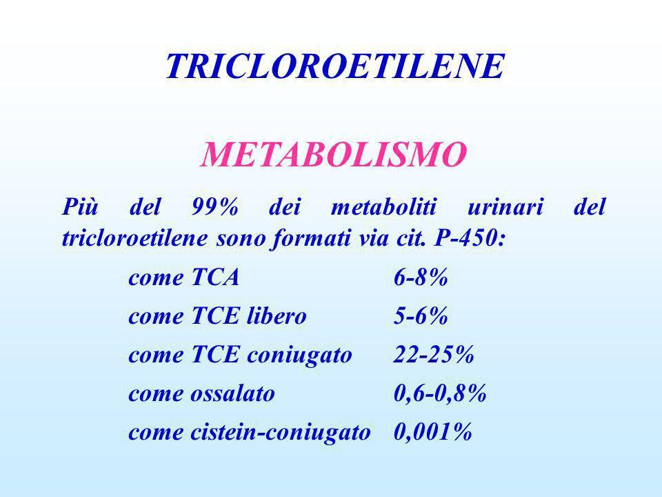 TRICLOROETILENE METABOLISMO Più del 99% dei metaboliti urinari del tricloroetilene sono formati via cit. P-450: come TCA6-8% come TCE libero5-6% come