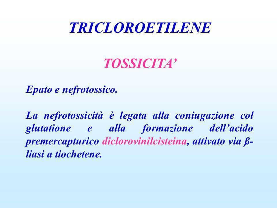 TRICLOROETILENE TOSSICITA Epato e nefrotossico. La nefrotossicità è legata alla coniugazione col glutatione e alla formazione dellacido premercapturic