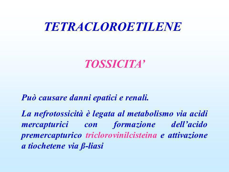 TETRACLOROETILENE TOSSICITA Può causare danni epatici e renali. La nefrotossicità è legata al metabolismo via acidi mercapturici con formazione dellac