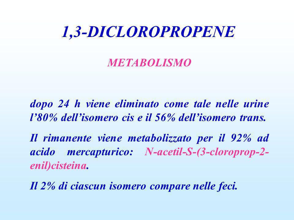 1,3-DICLOROPROPENE METABOLISMO dopo 24 h viene eliminato come tale nelle urine l80% dellisomero cis e il 56% dellisomero trans. Il rimanente viene met