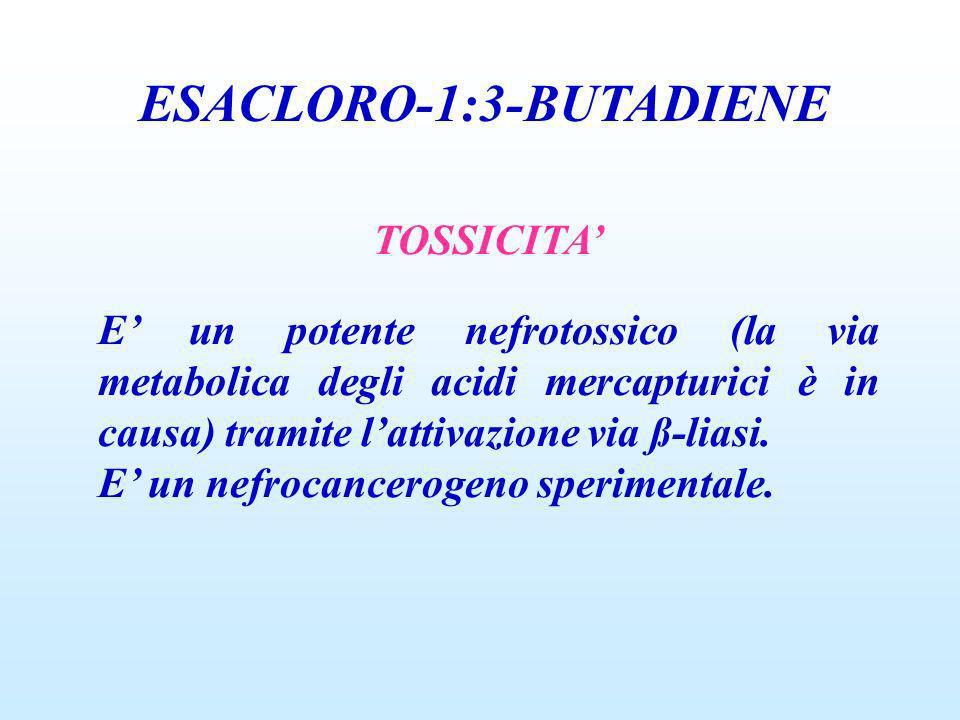 ESACLORO-1:3-BUTADIENE TOSSICITA E un potente nefrotossico (la via metabolica degli acidi mercapturici è in causa) tramite lattivazione via ß-liasi. E