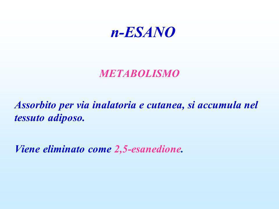 METABOLISMO Assorbito per via inalatoria e cutanea, si accumula nel tessuto adiposo. Viene eliminato come 2,5-esanedione. n-ESANO