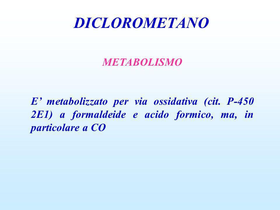 DICLOROMETANO METABOLISMO E metabolizzato per via ossidativa (cit. P-450 2E1) a formaldeide e acido formico, ma, in particolare a CO