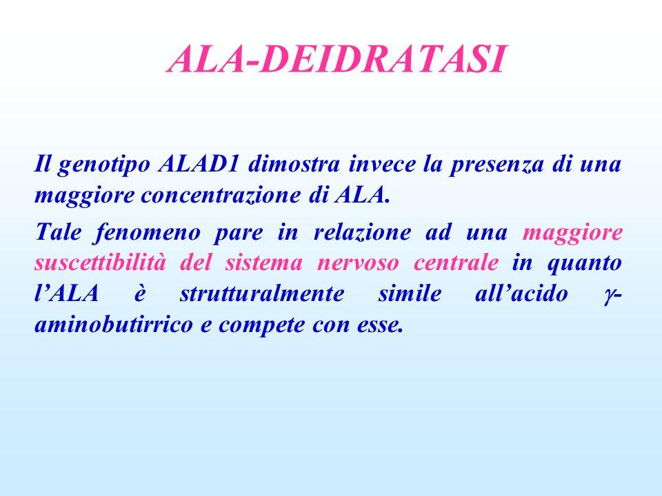 ALA-DEIDRATASI Il genotipo ALAD1 dimostra invece la presenza di una maggiore concentrazione di ALA. Tale fenomeno pare in relazione ad una maggiore su