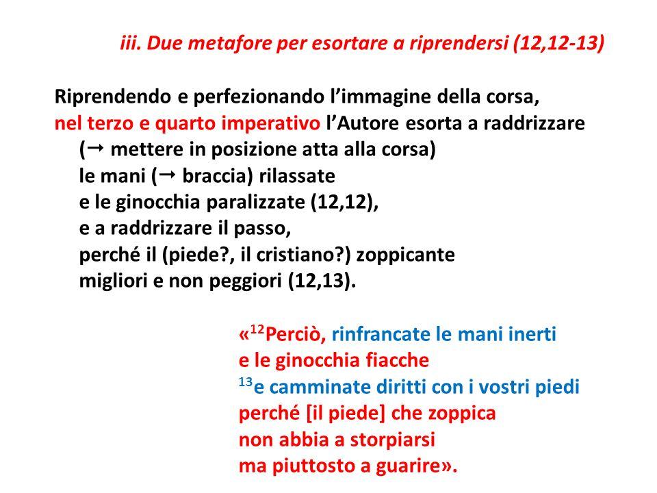 iii. Due metafore per esortare a riprendersi (12,12-13) Riprendendo e perfezionando limmagine della corsa, nel terzo e quarto imperativo lAutore esort