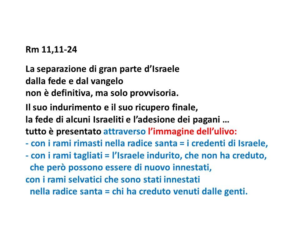 Rm 11,11-24 La separazione di gran parte dIsraele dalla fede e dal vangelo non è definitiva, ma solo provvisoria. Il suo indurimento e il suo ricupero