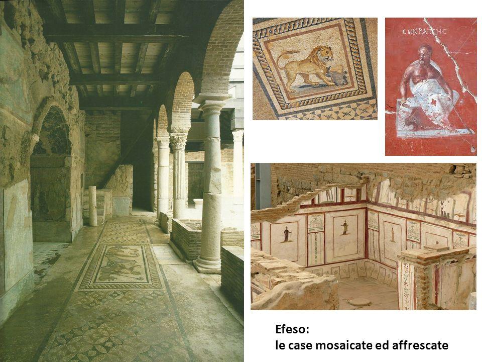 Efeso: le case mosaicate ed affrescate