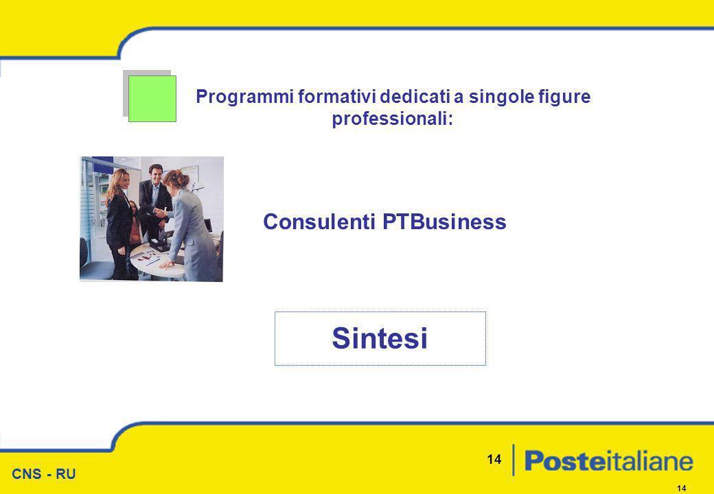 CNS - RU 14 Programmi formativi dedicati a singole figure professionali: Sintesi Consulenti PTBusiness