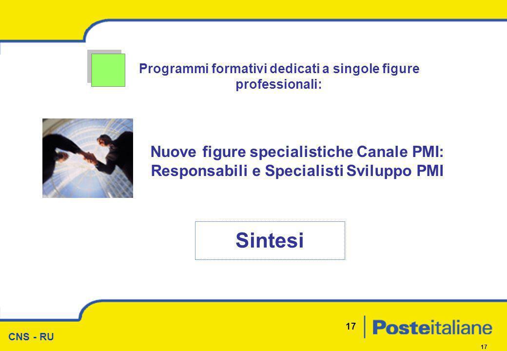 CNS - RU 17 Programmi formativi dedicati a singole figure professionali: Sintesi Nuove figure specialistiche Canale PMI: Responsabili e Specialisti Sv