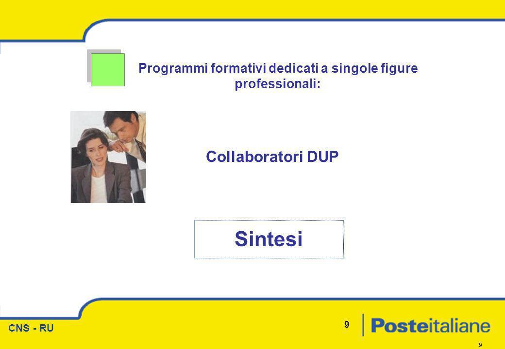CNS - RU 9 9 Programmi formativi dedicati a singole figure professionali: Sintesi Collaboratori DUP