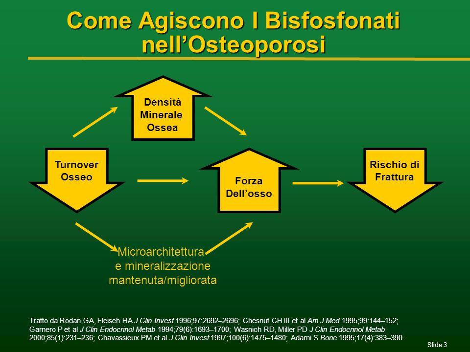 Slide 3 Come Agiscono I Bisfosfonati nellOsteoporosi Tratto da Rodan GA, Fleisch HA J Clin Invest 1996;97:2692–2696; Chesnut CH III et al Am J Med 199