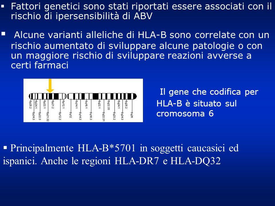 Fattori genetici sono stati riportati essere associati con il rischio di ipersensibilità di ABV Alcune varianti alleliche di HLA-B sono correlate con