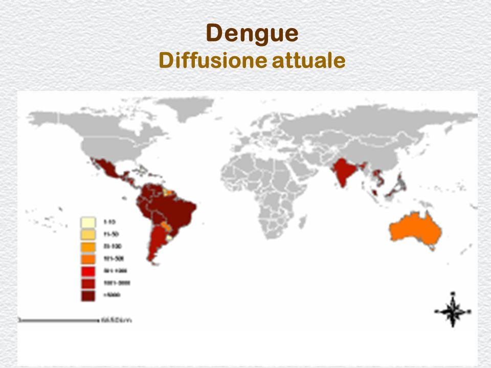 29 Dengue Diffusione attuale