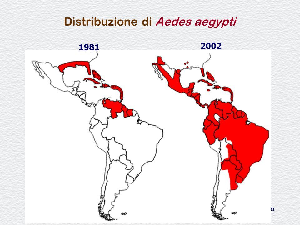 31 Distribuzione di Aedes aegypti 1981 2002