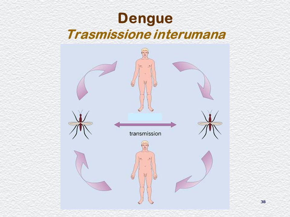 38 Dengue Trasmissione interumana