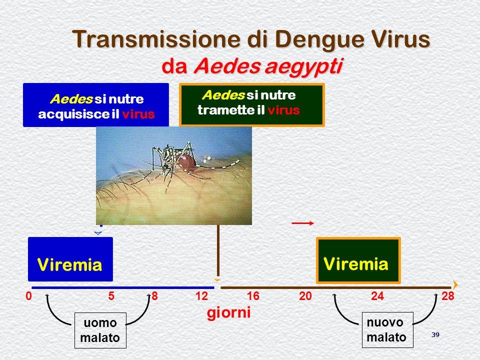 39 Aedes si nutre acquisisce il virus Transmissione di Dengue Virus da Aedes aegypti Aedes si nutre tramette il virus Viremia giorni 0581216202428 nuo