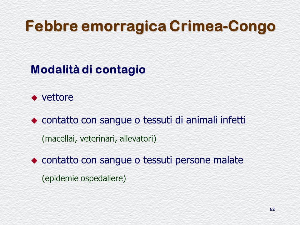 62 Febbre emorragica Crimea-Congo Modalità di contagio u vettore u contatto con sangue o tessuti di animali infetti (macellai, veterinari, allevatori)