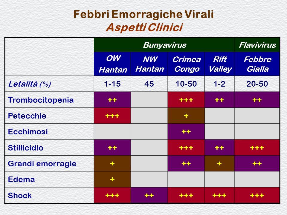 78 Febbri Emorragiche Virali Aspetti Clinici BunyavirusFlavivirus OW Hantan NW Hantan Crimea Congo Rift Valley Febbre Gialla Letalità (%) 1-154510-501