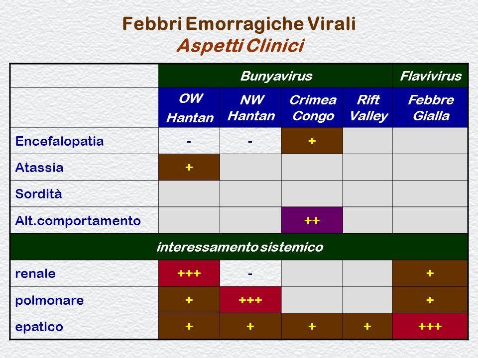 80 Febbri Emorragiche Virali Aspetti Clinici BunyavirusFlavivirus OW Hantan NW Hantan Crimea Congo Rift Valley Febbre Gialla Encefalopatia--+ Atassia+