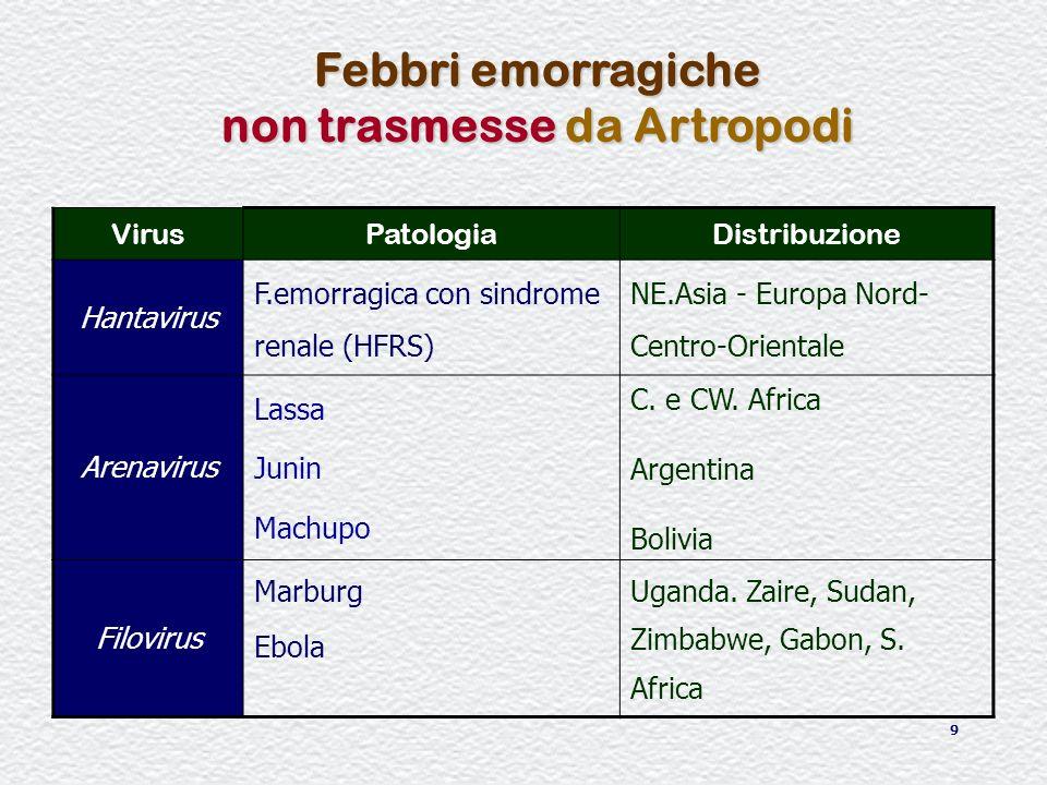 10 Febbri emorragiche non da artropodi Trasmissione alluomo VeicoloVirusMalattia Aerosol Escrementi di roditori essiccati Arenavirus Hantanvirus Cibi/acque contaminate Arenavirus (Lassa)