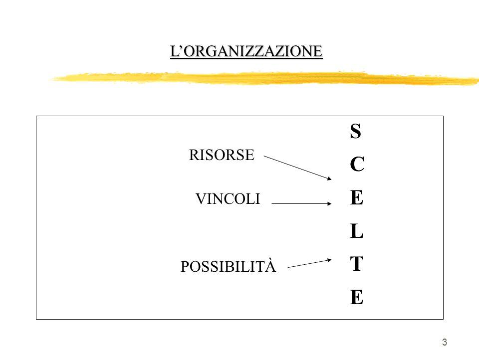3 LORGANIZZAZIONE RISORSE VINCOLI POSSIBILITÀ SCELTESCELTE