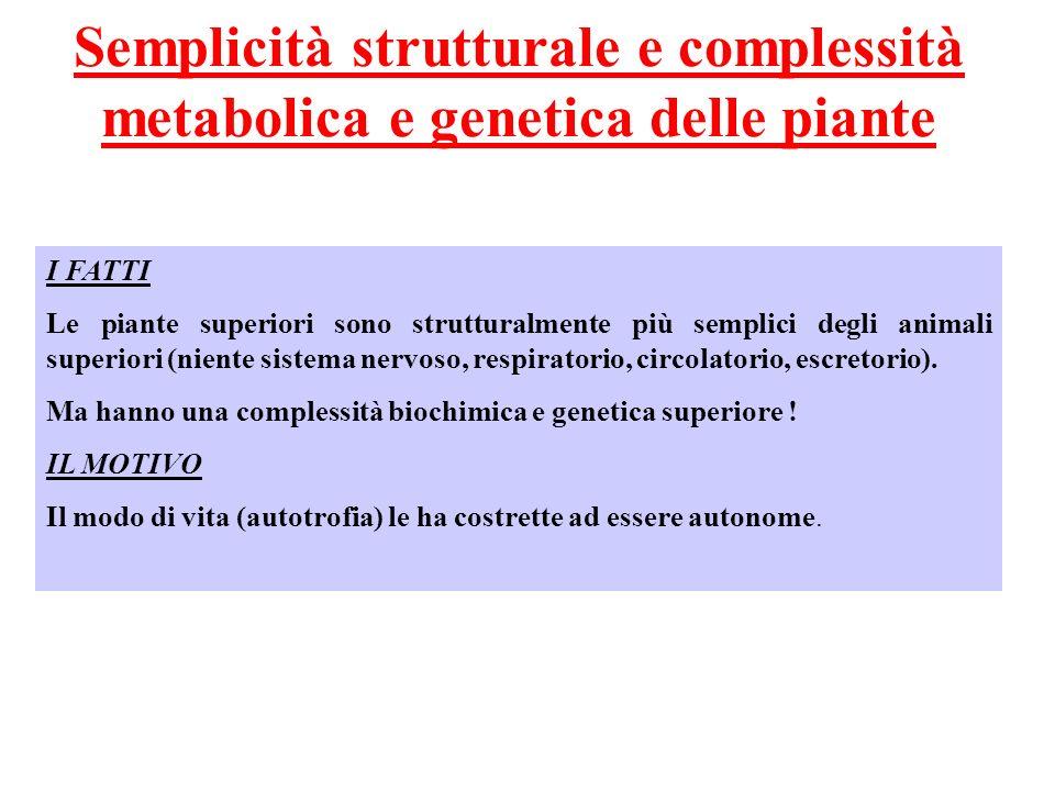 Semplicità strutturale e complessità metabolica e genetica delle piante I FATTI Le piante superiori sono strutturalmente più semplici degli animali superiori (niente sistema nervoso, respiratorio, circolatorio, escretorio).