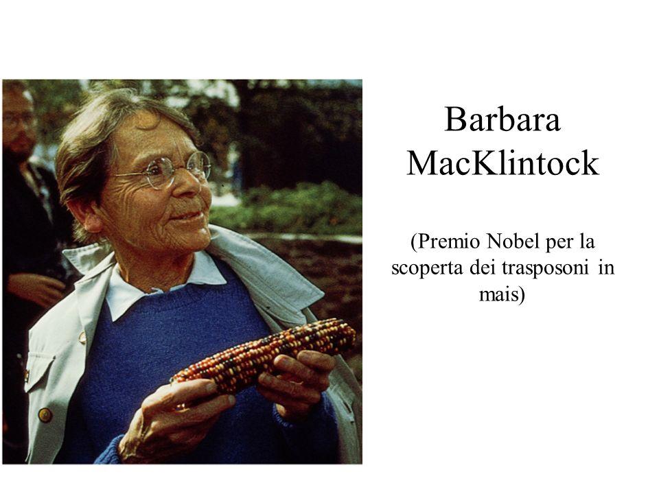 Barbara MacKlintock (Premio Nobel per la scoperta dei trasposoni in mais)