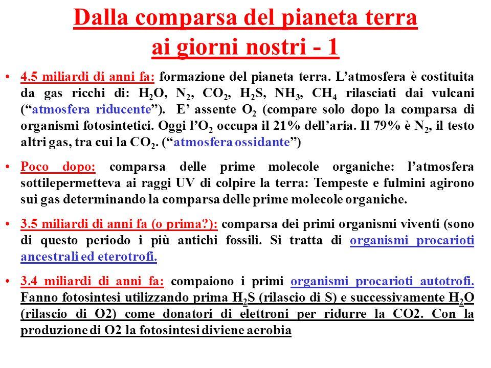 Dalla comparsa del pianeta terra ai giorni nostri - 1 4.5 miliardi di anni fa: formazione del pianeta terra. Latmosfera è costituita da gas ricchi di: