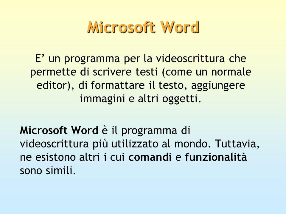 Microsoft Word E un programma per la videoscrittura che permette di scrivere testi (come un normale editor), di formattare il testo, aggiungere immagi