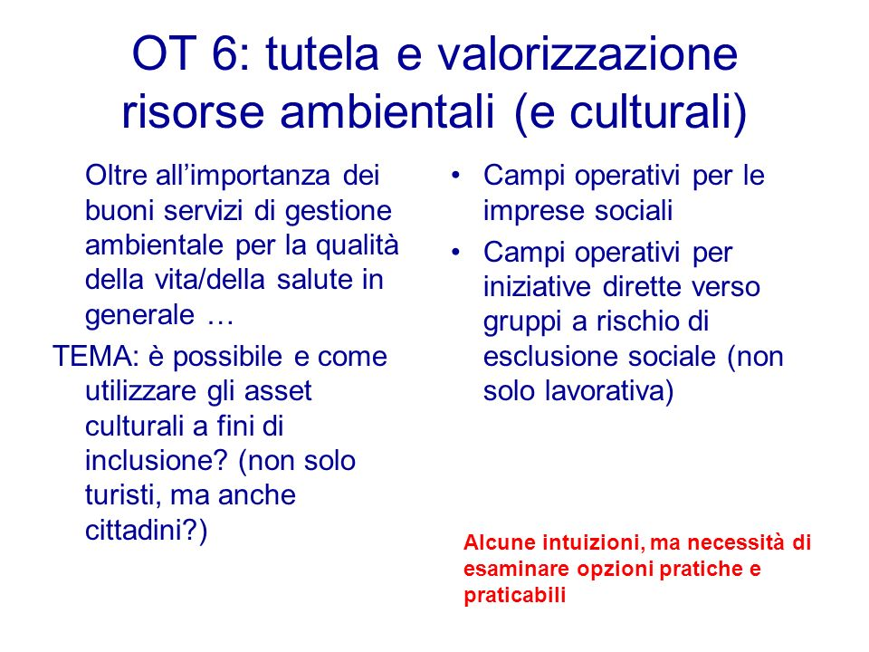 OT 6: tutela e valorizzazione risorse ambientali (e culturali) Oltre allimportanza dei buoni servizi di gestione ambientale per la qualità della vita/della salute in generale … TEMA: è possibile e come utilizzare gli asset culturali a fini di inclusione.