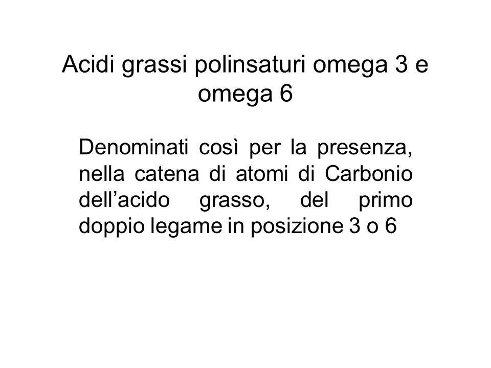 Acidi grassi omega 3 acido alfa linolenico (LNA) acido eicosapentaenoico (EPA): principale precursore delle prostaglandine serie 3, che hanno funzione anti aggregante piastrinica acido docosaesaenoico (DHA): prevale la funzione strutturale.