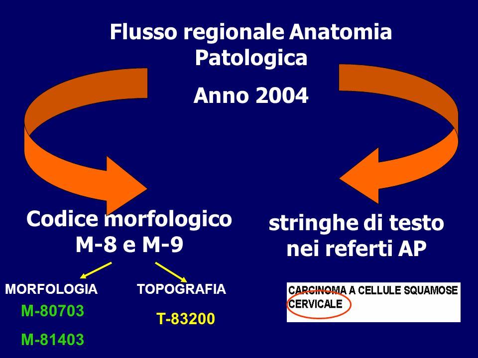 Codice morfologico M-8 e M-9 Flusso regionale Anatomia Patologica Anno 2004 stringhe di testo nei referti AP MORFOLOGIA M-80703 M-81403 TOPOGRAFIA T-8