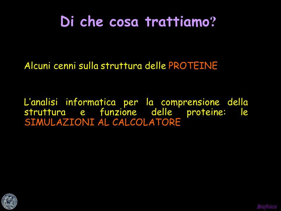 Biofisica Lanalisi informatica per la comprensione della struttura e funzione delle proteine: le SIMULAZIONI AL CALCOLATORE Di che cosa trattiamo ? Al