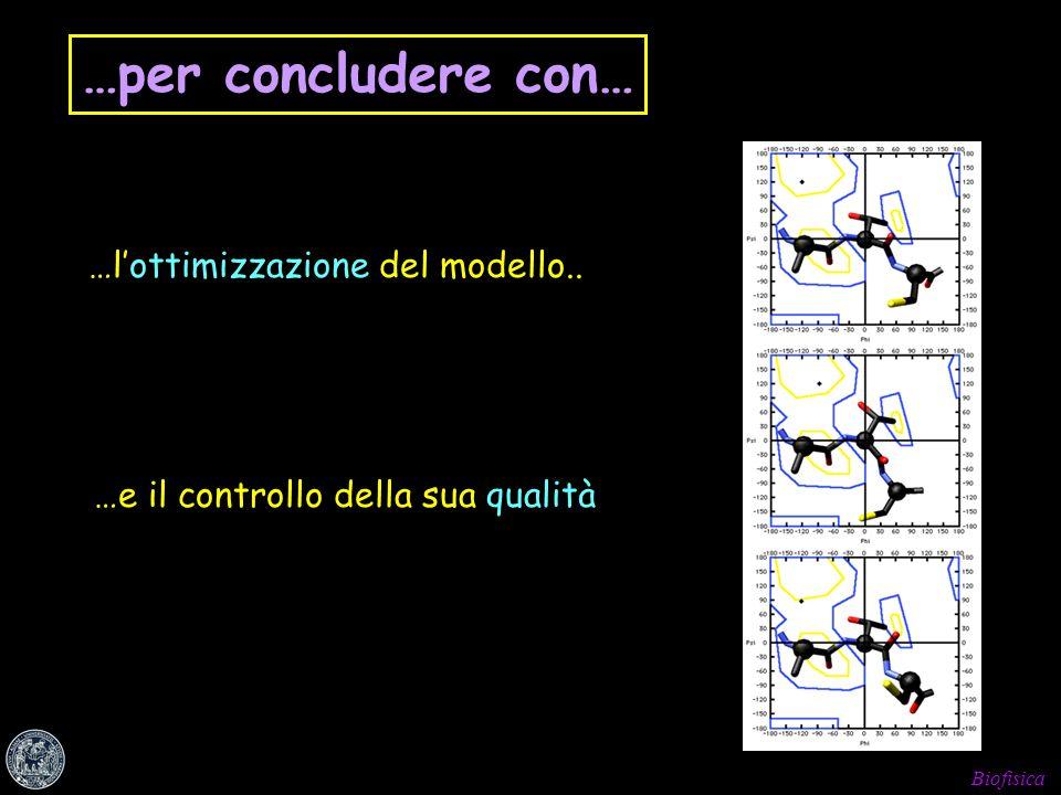 Biofisica …lottimizzazione del modello.. …e il controllo della sua qualità …per concludere con…