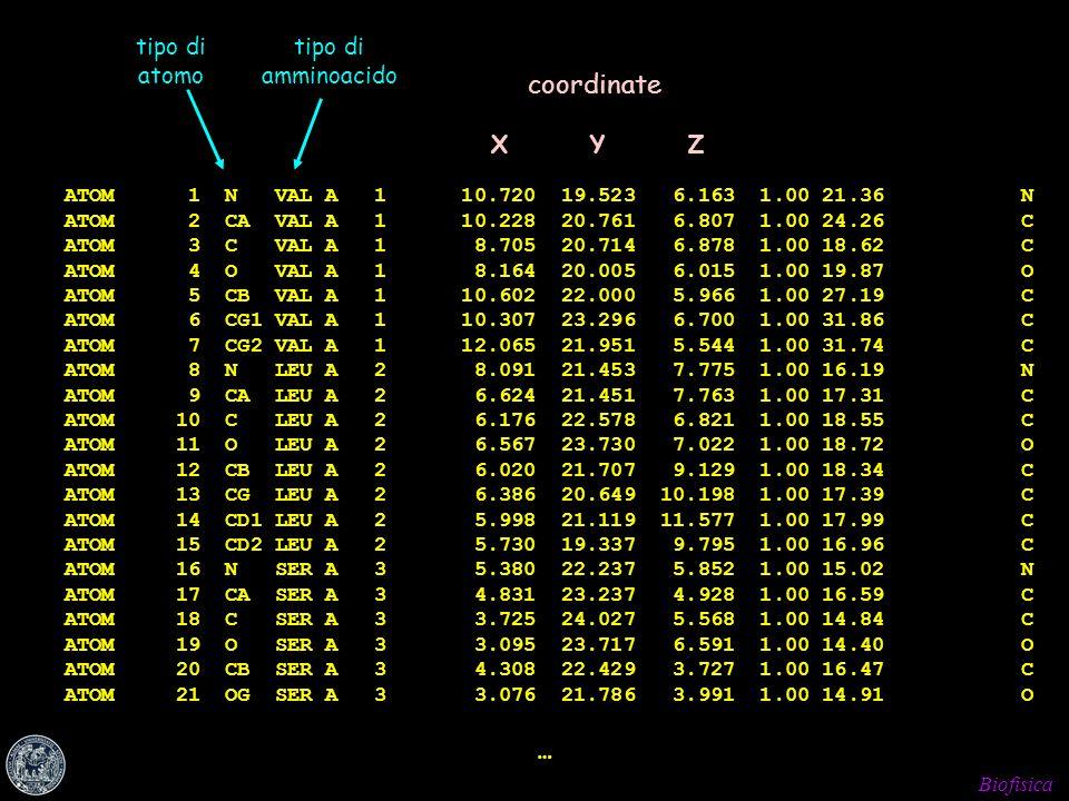 Biofisica ATOM 1 N VAL A 1 10.720 19.523 6.163 1.00 21.36 N ATOM 2 CA VAL A 1 10.228 20.761 6.807 1.00 24.26 C ATOM 3 C VAL A 1 8.705 20.714 6.878 1.0