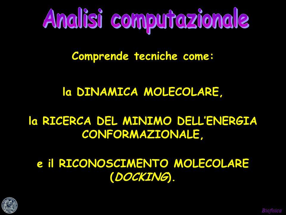 Biofisica e il RICONOSCIMENTO MOLECOLARE (DOCKING). Comprende tecniche come: la RICERCA DEL MINIMO DELLENERGIA CONFORMAZIONALE, la DINAMICA MOLECOLARE