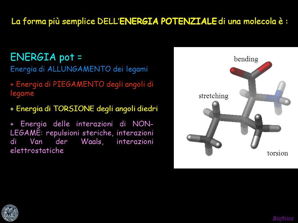 Biofisica La forma più semplice DELLENERGIA POTENZIALE di una molecola è : ENERGIA pot = Energia di ALLUNGAMENTO dei legami + Energia di PIEGAMENTO de