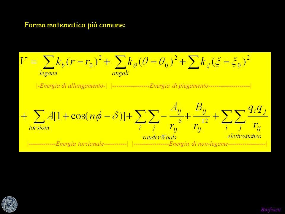 Biofisica Forma matematica più comune: |-Energia di allungamento-||------------------Energia di piegamento--------------------| |-------------Energia