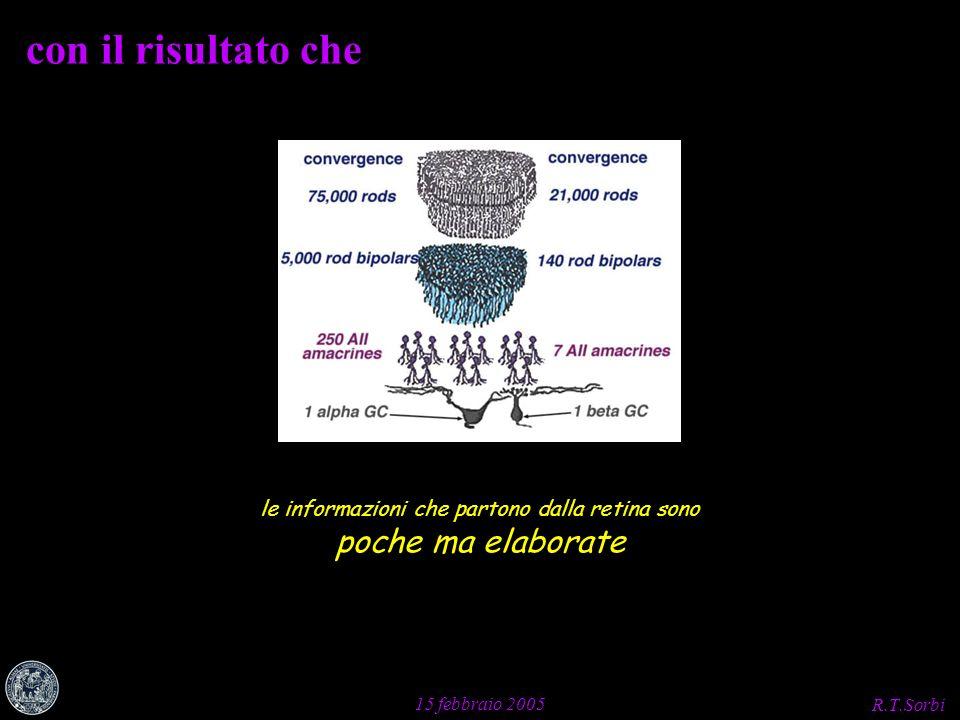R.T.Sorbi 15 febbraio 2005 con il risultato che le informazioni che partono dalla retina sono poche ma elaborate