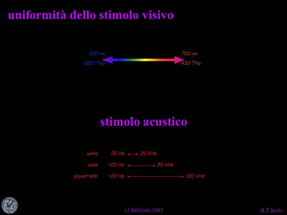 R.T.Sorbi 15 febbraio 2005 uniformità dello stimolo visivo 700 nm 430 THz 300 nm 1000 THz stimolo acustico 20 kHz20 Hzuomo 50 kHz~20 Hz cane 100 kHz~2