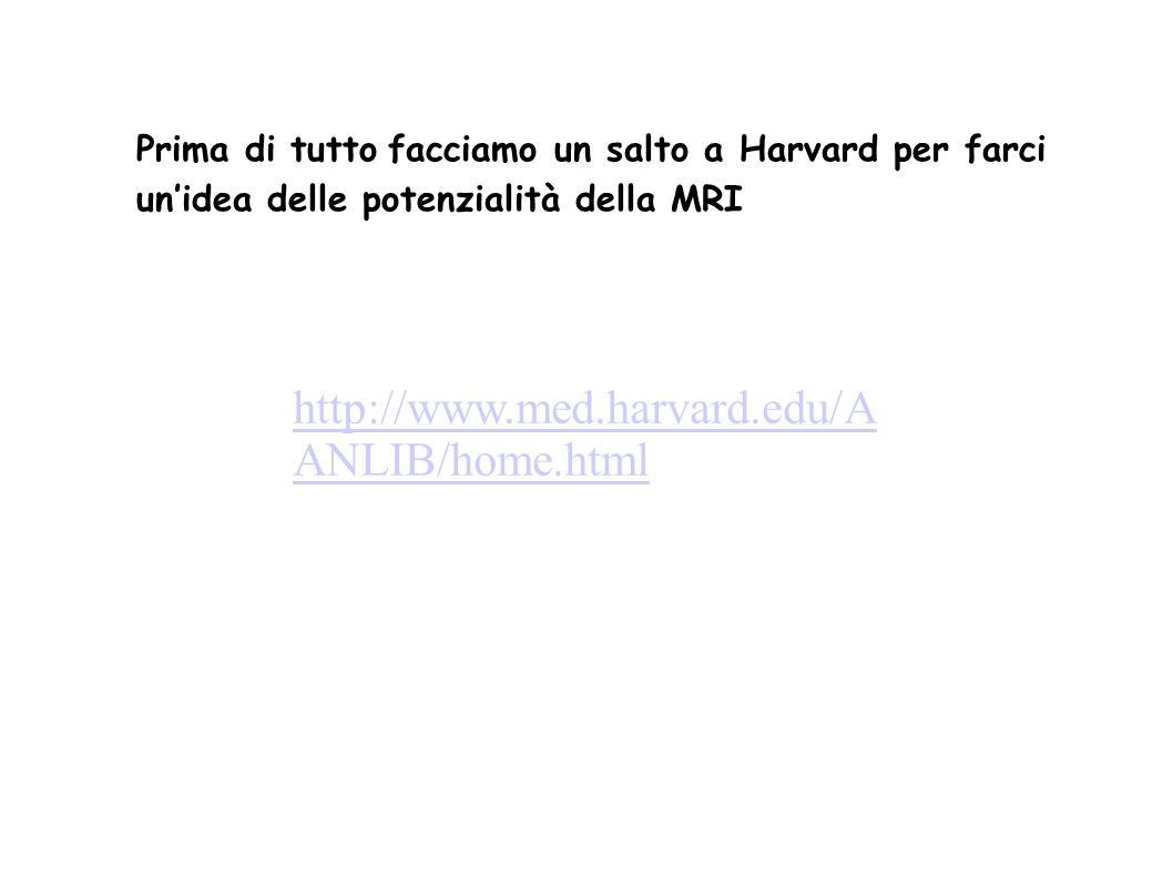 http://www.med.harvard.edu/A ANLIB/home.html Prima di tutto facciamo un salto a Harvard per farci unidea delle potenzialità della MRI