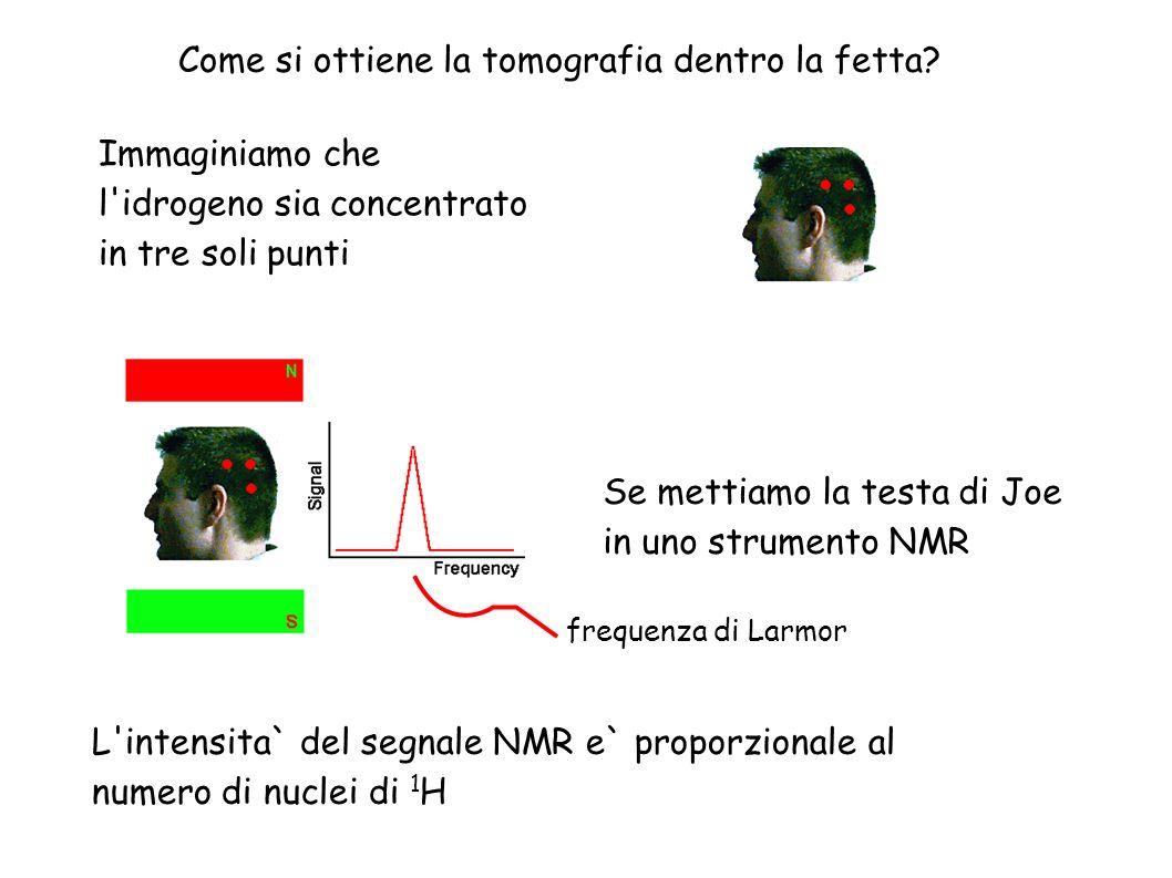Come si ottiene la tomografia dentro la fetta? Immaginiamo che l'idrogeno sia concentrato in tre soli punti L'intensita` del segnale NMR e` proporzion